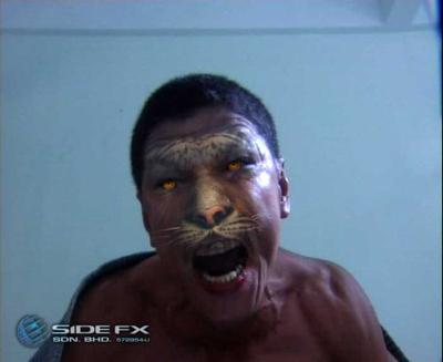 Tiger_04