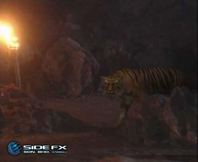 Tiger_08
